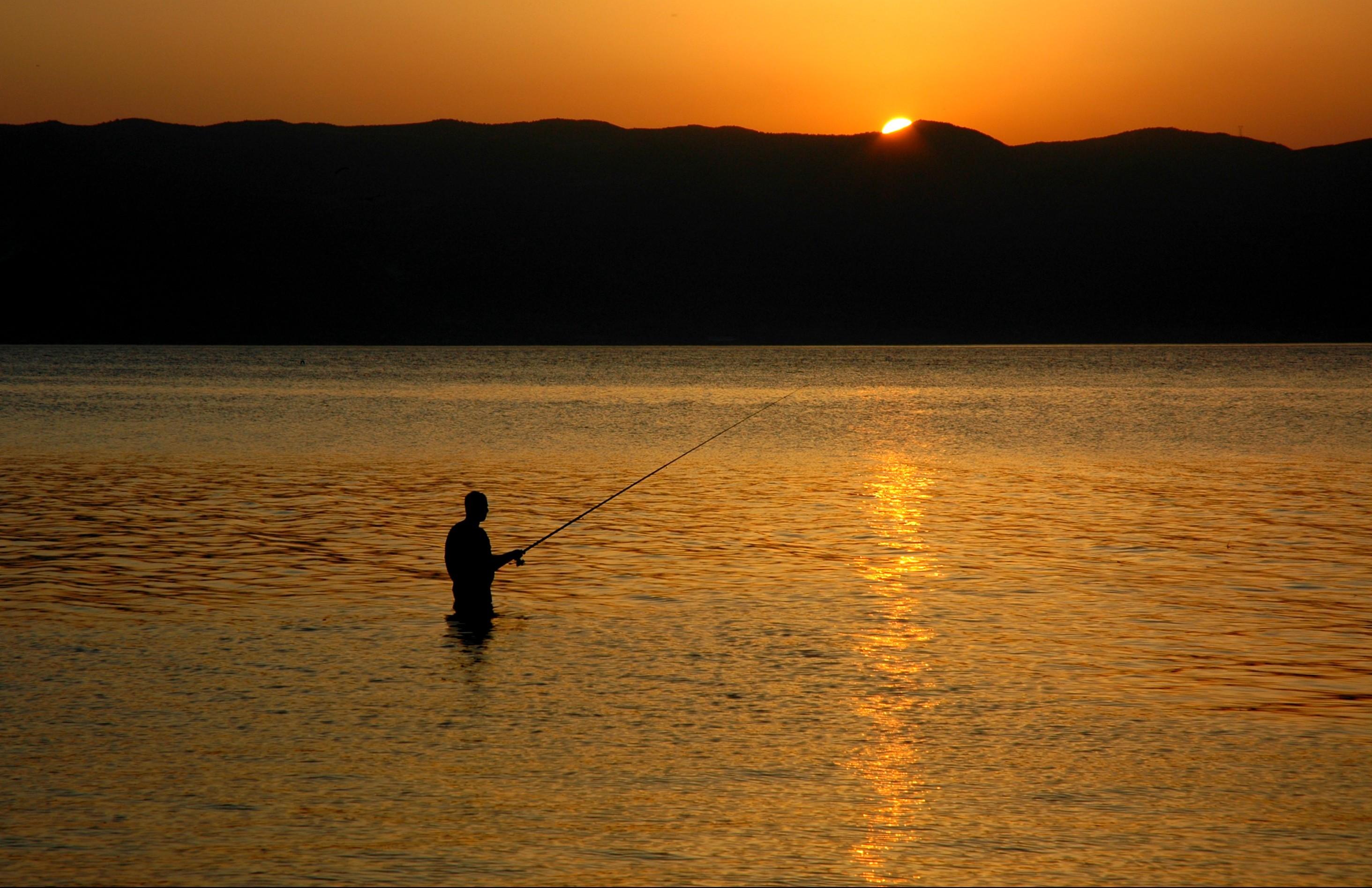 Digital Fishing Trip